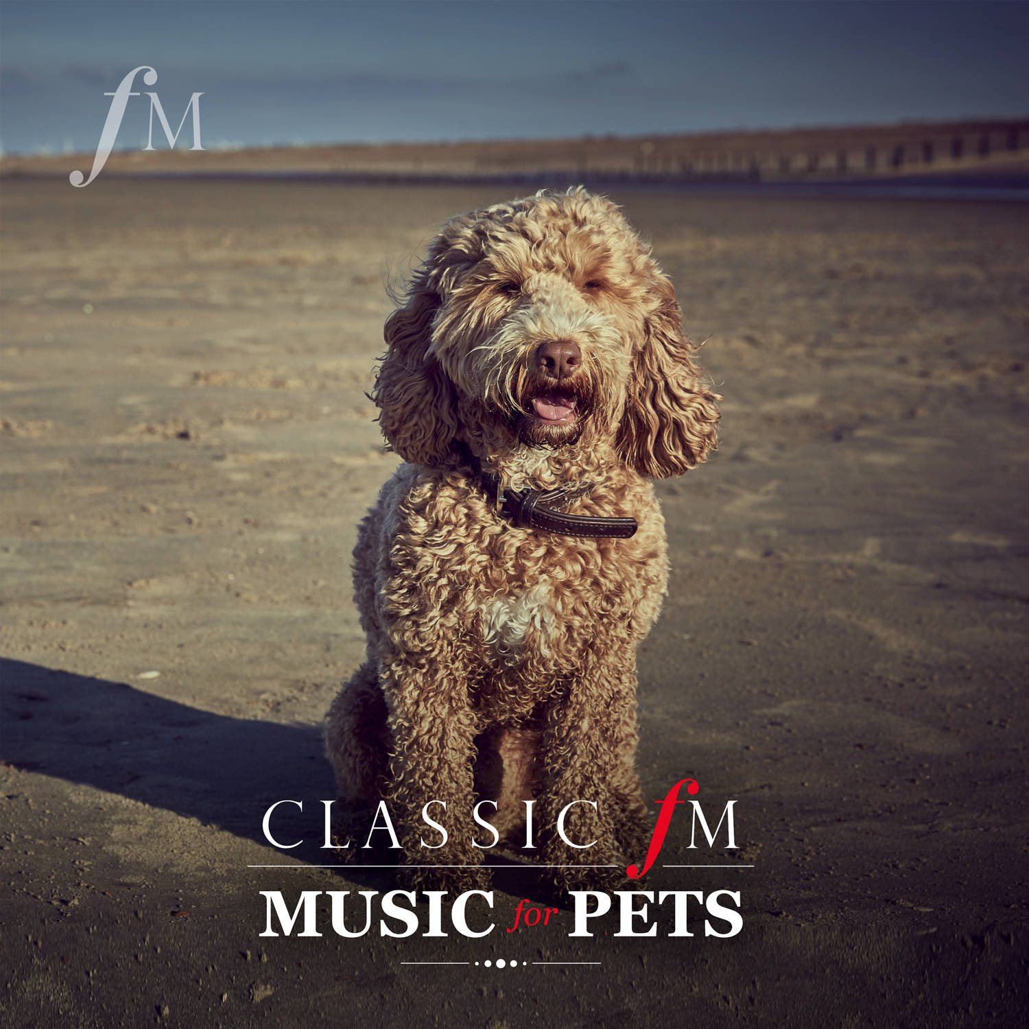 Classic FM Music For Pets image